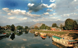Kashmiris11